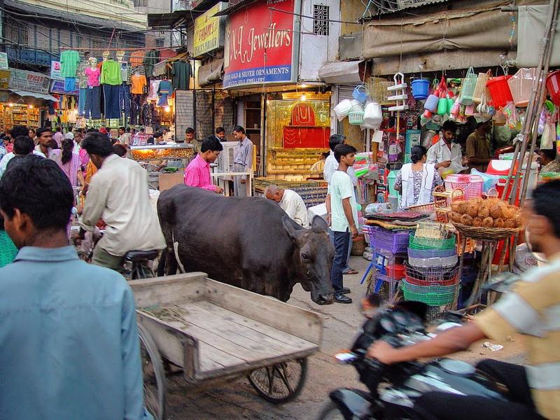 海外就職の前にインドの概要を知ろう!