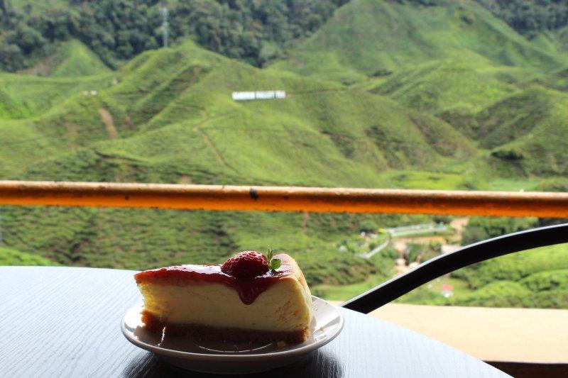 キャメロンバレーティーのカフェテラスから眼下に広がる茶畑を一望できる